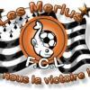 Logo fcl